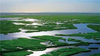 遼寧省開展自然保護地資源調查摸底