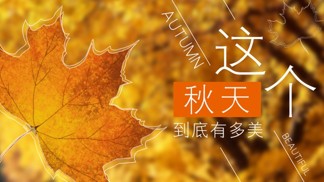 這個秋天到底有多美?60秒帶你看遍迷人秋景
