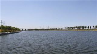 營口打響水生態治理攻堅戰