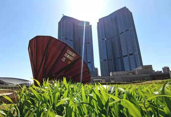 """【""""飛閱""""中國】將藝術搬到空中 沈陽k11空中雕塑公園開園"""